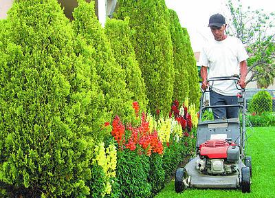 Jardineros cobran menos que trabajadores municipales - Trabajo jardinero madrid ...